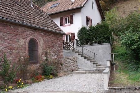 GITE LA ROSERAIE PROCHE DE KAYSERSBERG - Fréland - Haus