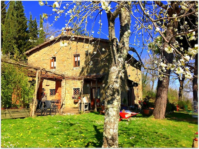 Typical stonebuilt Tuscan farmhouse - Lucolena in CHianti - Appartement