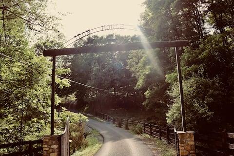 Boonie's Iron Horse Farm