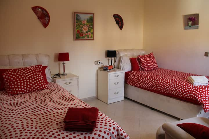 Bed & Breakfast Flamenco kamer