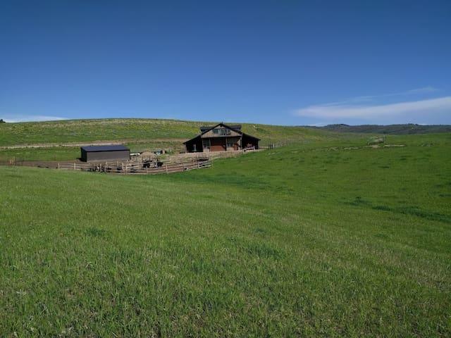 Yak Ranch Stay