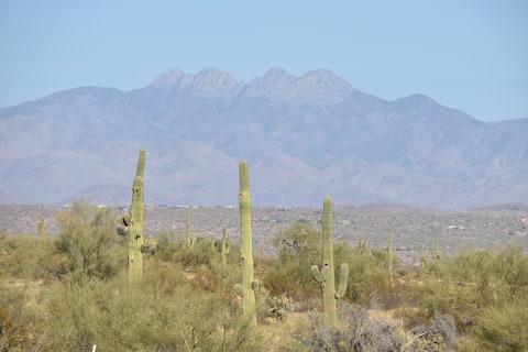 Desert Paradise in Fountain Hills