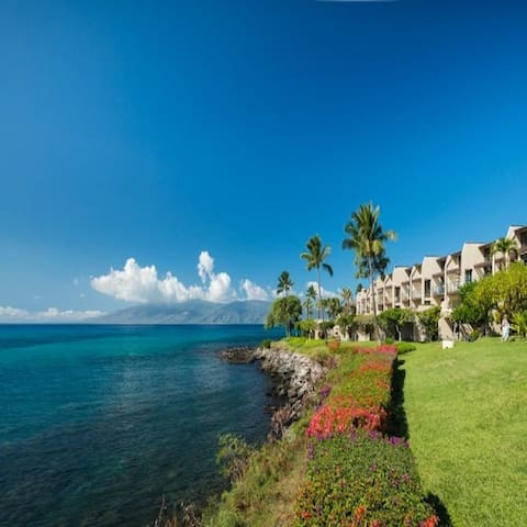 Napili Point B44 HOLIDAY SPECIALS AVAILABLE NOW!