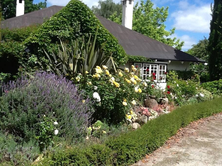 Heritage house garden houses for rent in havelock for Indoor gardening diana yakeley