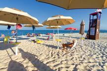 Spiaggia privata, riservata ai soli ospiti del residence, ombrelloni riservati.