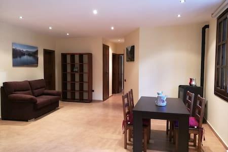 Ampli apartament en planta baixa (amb piscina).