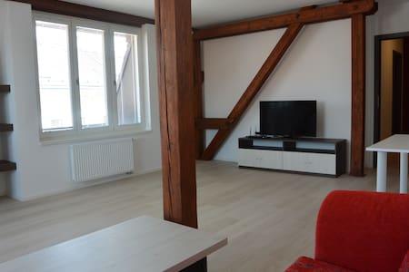 Českobratrské náměstí 285/2 - Mladá Boleslav - House