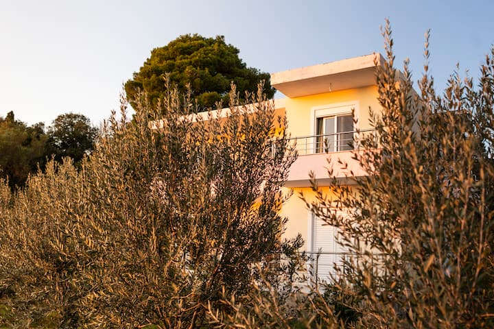 Vila Romeo - a secluded paradise