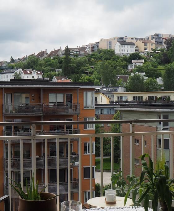 Utsikt fra balkongen. Fra leiligheten er det kort vei til Svartdalsparken.