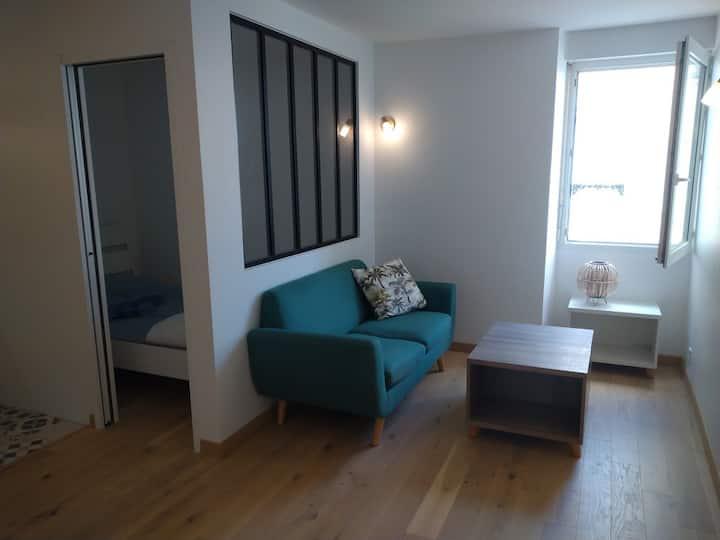 Appartement neuf Cœur Palais