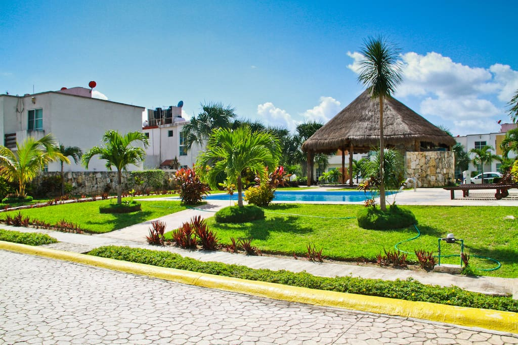 Swimming pool area and gardens