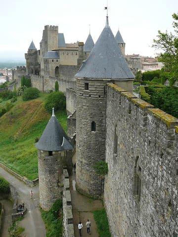 La Cité de Carcassonne à 40 minutes