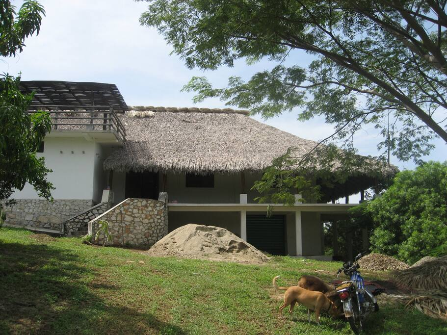 The main entrance to the house showing the wrap around porch with hammocks