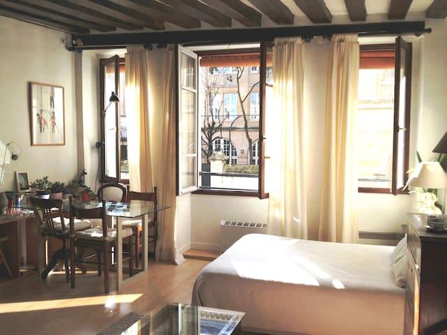 Charming Apartment in Central Paris - París - Apartamento