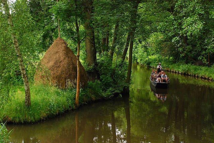 Your hideaway in Spreewald. - Spreewaldheide - Pis