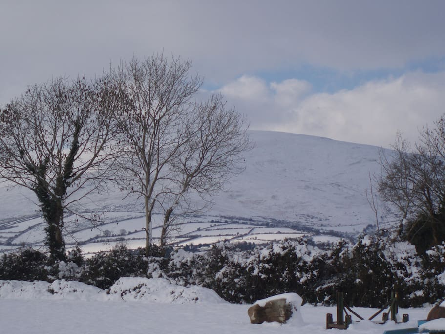 Wintertime in the Blackstairs Mountains