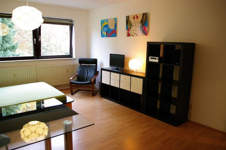 furnished Apartment near the Rhine