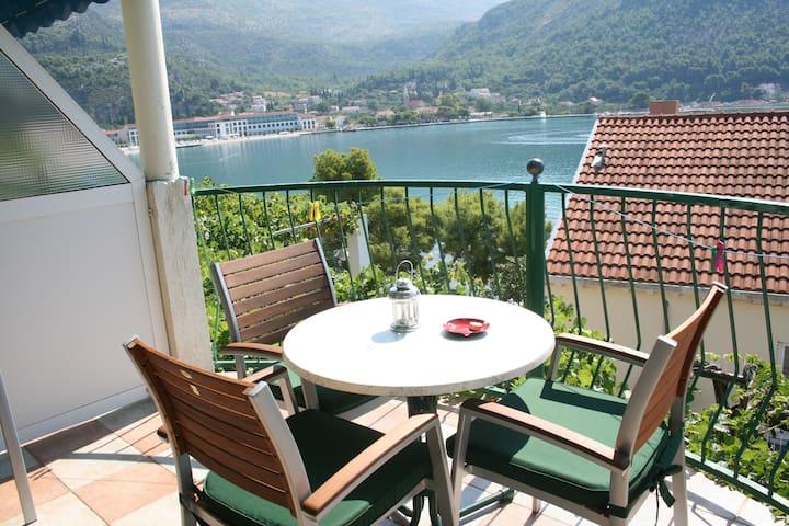 Vila Anka apartment Rogac - Slano - Apartment
