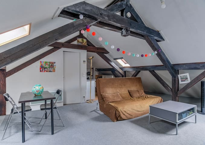Large studio Strasbourg Poincaré