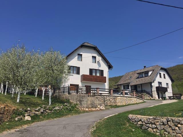 House Katica Plitvice lakes - Poljanak 8/1 - Dům