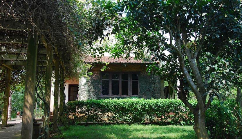 3BR Charming villa in pinetree garden - Hòa Sơn - Villa