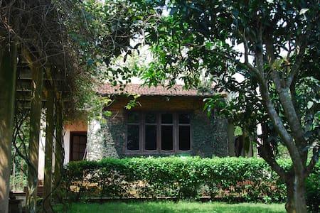 3BR Charming villa in pinetree garden - Hòa Sơn - Вилла