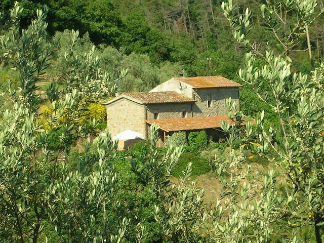 Agriturismo Biancospino - Lamporecchio - Haus
