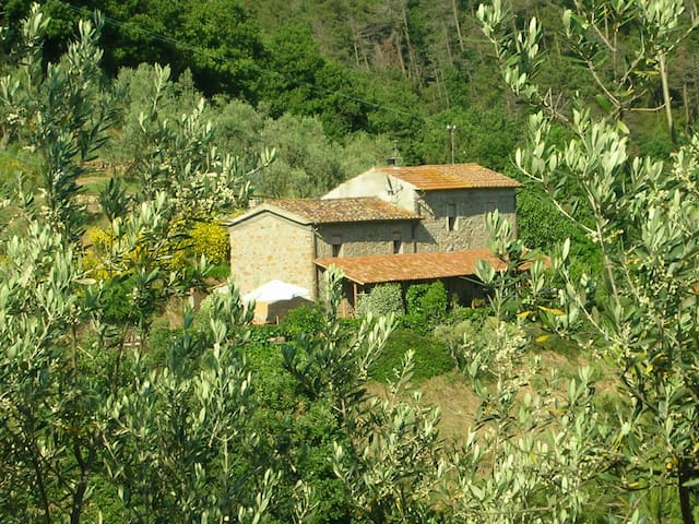 Agriturismo Biancospino - Lamporecchio - Dom
