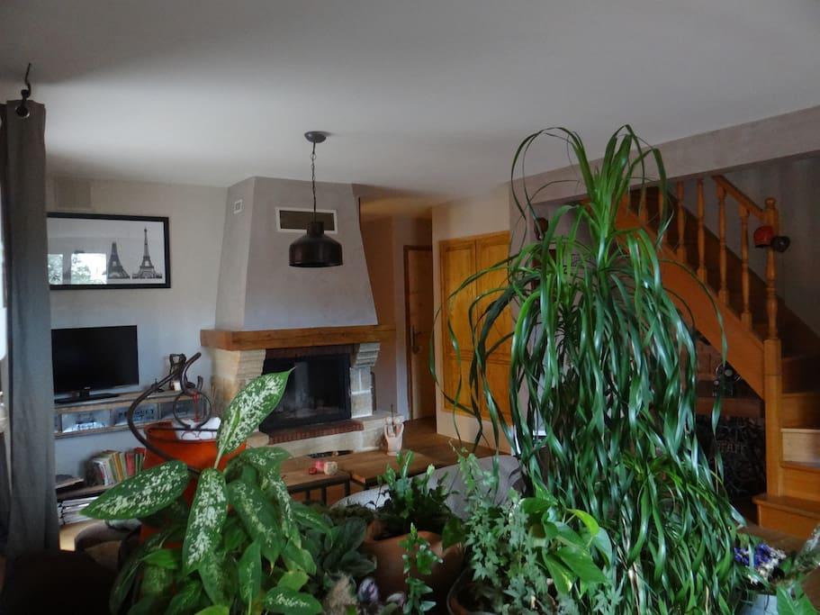 Coin salon avec une cheminée fonctionnelle