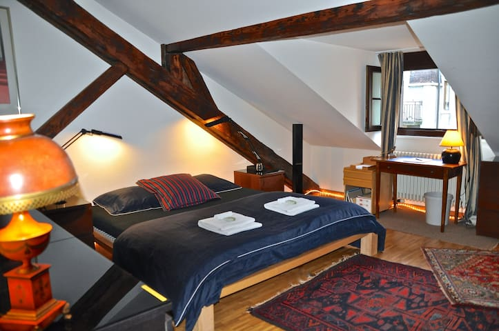 Large attic room with style center - Geneva - Apartmen