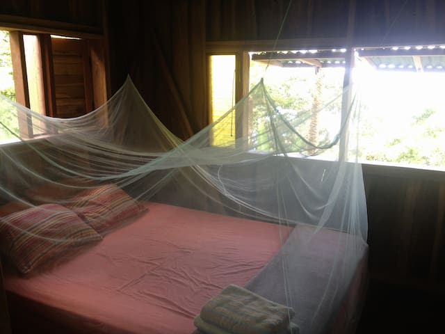Bedroom with mosquito net