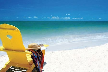 BEACH FUN OR BUSINESS  SUITE - Clearwater