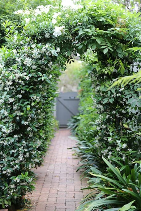 Find your apartment down the garden path.