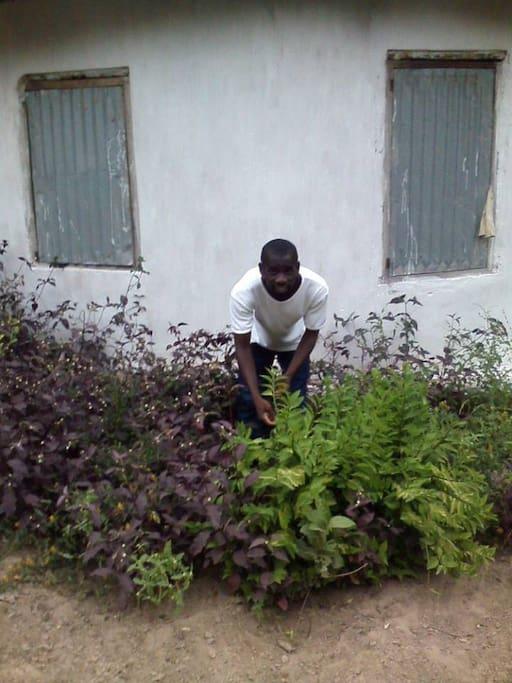 am in the garden