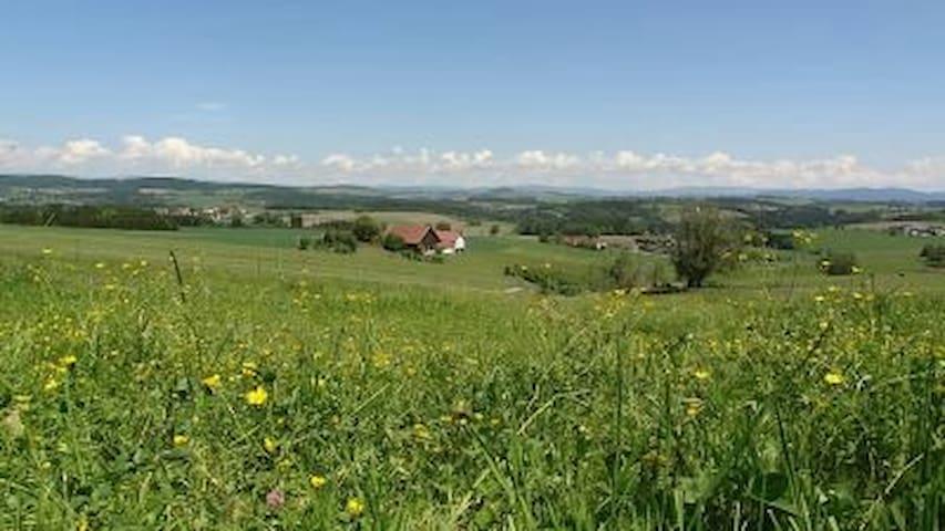 Einfachlebenhof in ruhiger Lage - Kirchberg vorm Wald - Talo