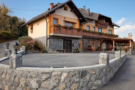 Tourist farm Škrbina app3 - Apartment
