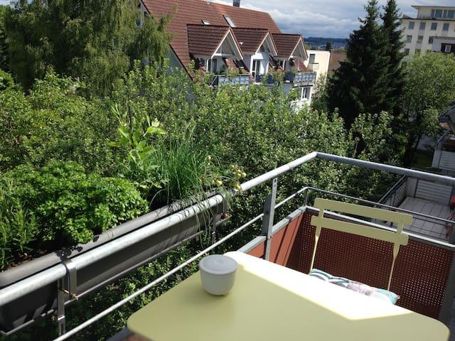 Helle Maisonette-Wohnung nahe des Seerheins - Konstanz
