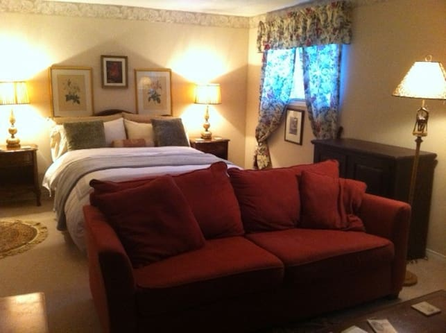 Special Offer - Lovely Lower Suite with Fireplace