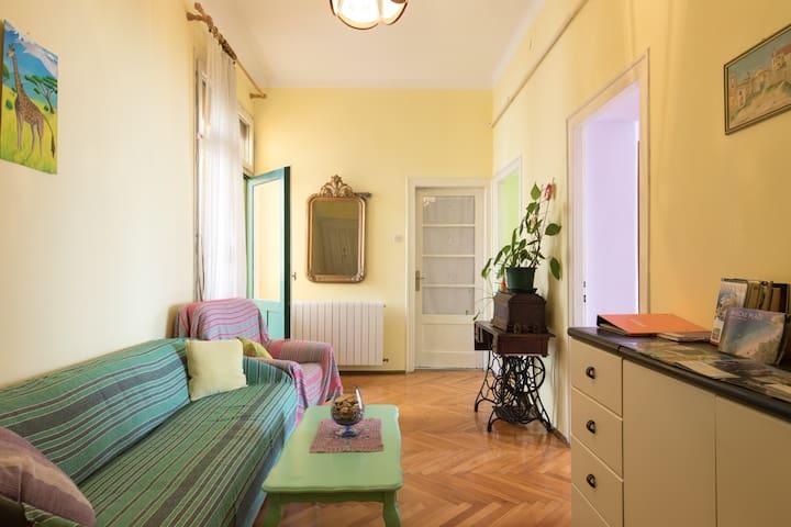 True colours cosy apartment in Rijeka city centre