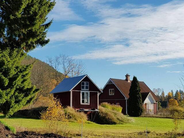 Swedish house beautiful located..100m from a lake