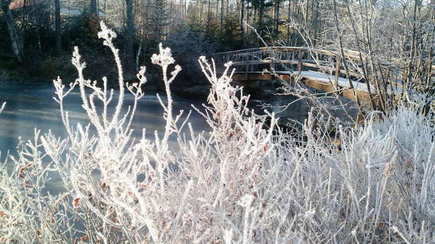 Frosty delight
