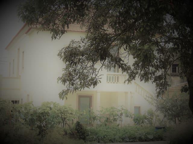 Casa dos Castanheiros C