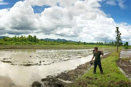 PorKang Farm- MaeMoh