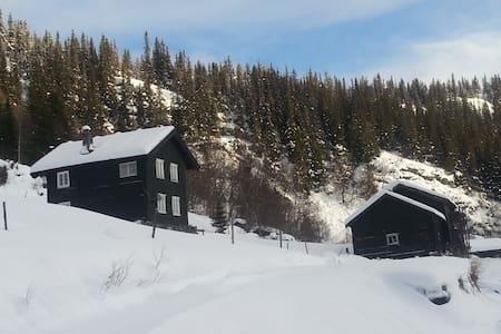 Telemark, Bondal-Old farmer place, - Tuddal