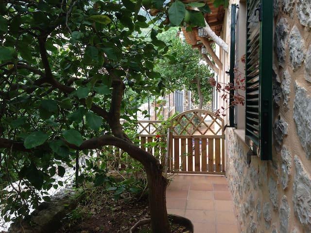 Apartamento Agradable y Tranquilo - Deyá - Apartament