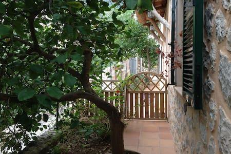 Apartamento Agradable y Tranquilo - Deyá