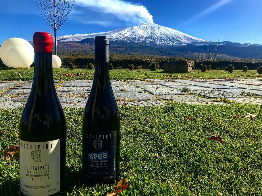 Etna and wines