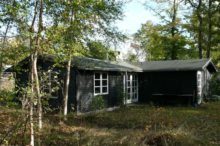 Romantic wood cabin near Aarhus - Ega - Chalet