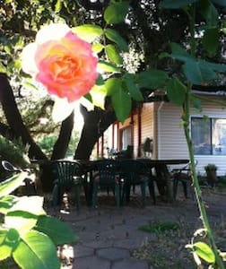 B&B WELL near the Ocean & Redwoods - Inap sarapan