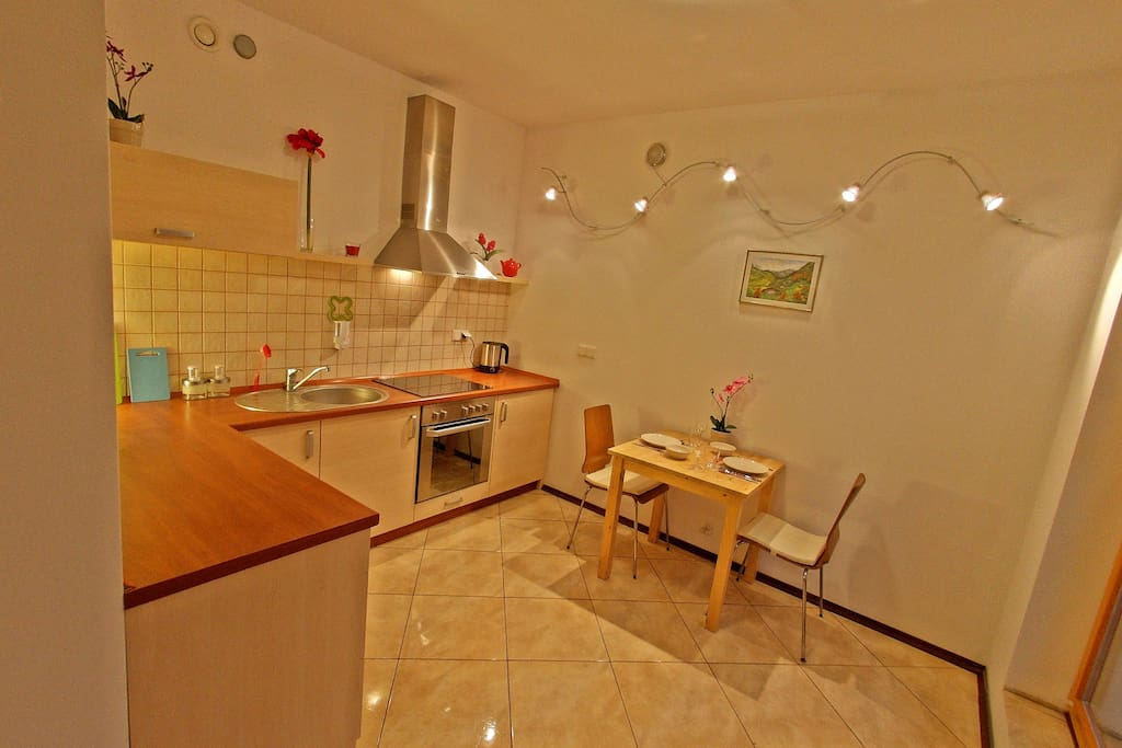 Kitchen fully furnished with new household appliances (oven, electric cooker, refrigerator, electric kettle, dishwasher)